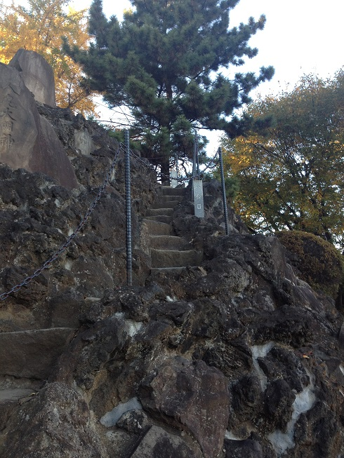 品川神社 富士登山.jpg