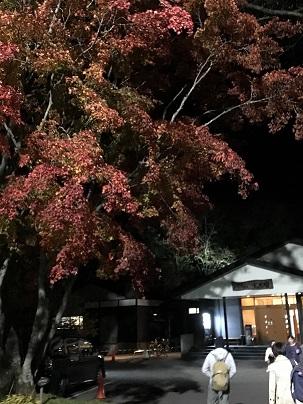 帯広のモール温泉.jpg